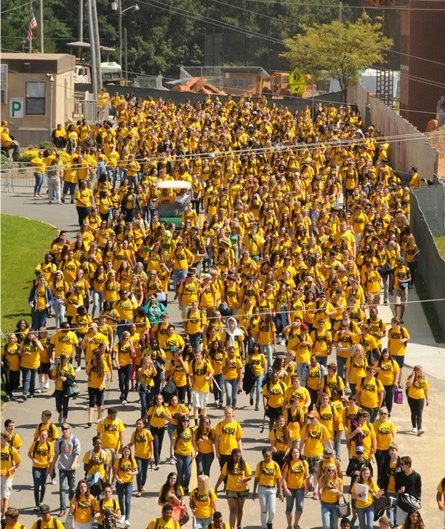 The sea of yellow that is the most reported memory of the first Lion Pride day.